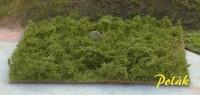 Wildgebüsch - Grüngemisch
