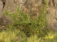 Grasbüschel, Höhe 4,5 mm, wiesengrün (Variante A)