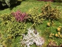Sträucher-Sortiment H0 Frühling